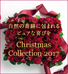 【数量限定】ジュリークのクリスマスコレクション2017